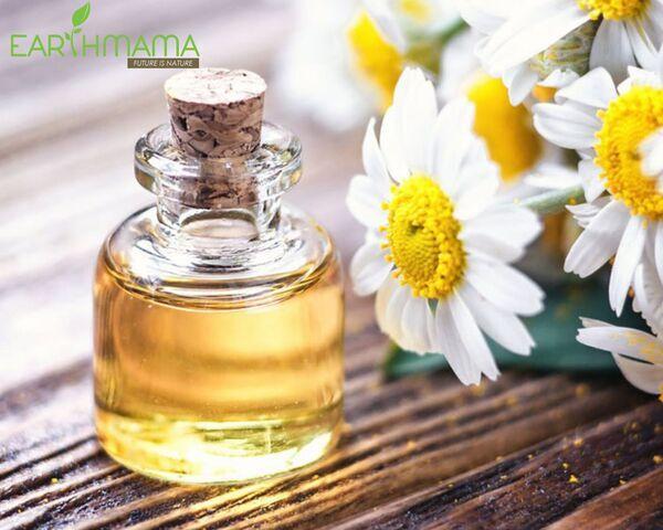 Hoa cúc La Mã được ứng dụng trong các nhiều sản phẩm chăm sóc da